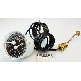 Термоманометр Demrad TE15I